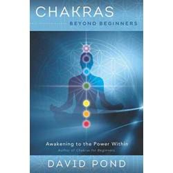 Chakras Beyond Beginners by David Pond